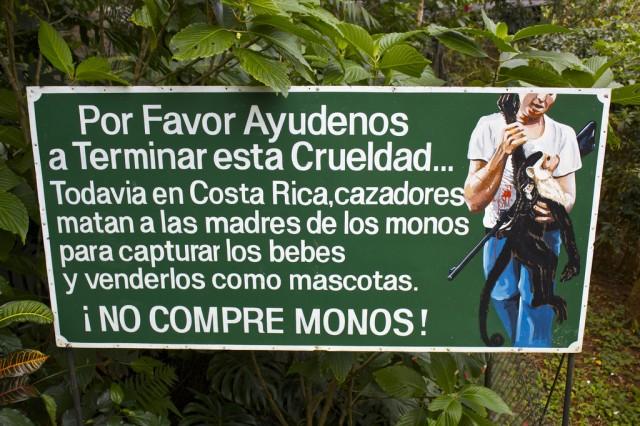 Spanish Grammar: Present Tense [-AR] Verbs