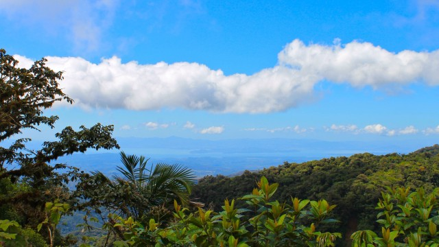 Costa Rica - Study Abroad 2013: My Expectations