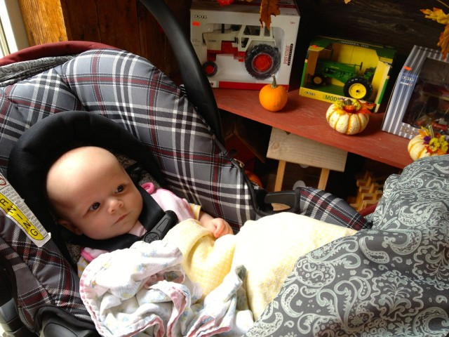 Spanish Reading Selections: Child Safety Seats