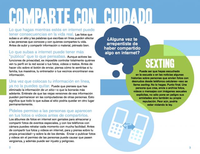 Spanish Reading Selections: Online Safety - Alerta en Línea