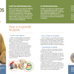 Spanish Reading Tasks: Personal Safety - La Seguridad del Juguete