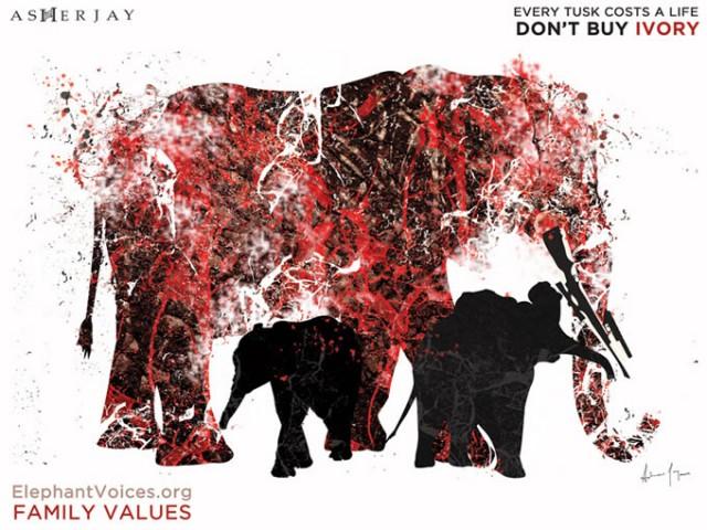 AsherJay-Elephantvoices-FamilyValues-DontBuyIvory-SocialMedia-680w