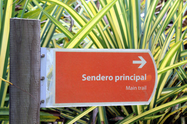 Spanish Vocabulary: Horticulture - Places Around Town