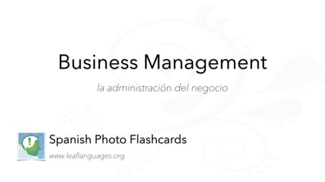 Spanish Photo Flashcards: Business Management