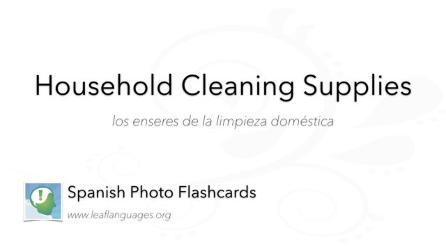 Spanish Photo Flashcards: Household Cleaning Supplies