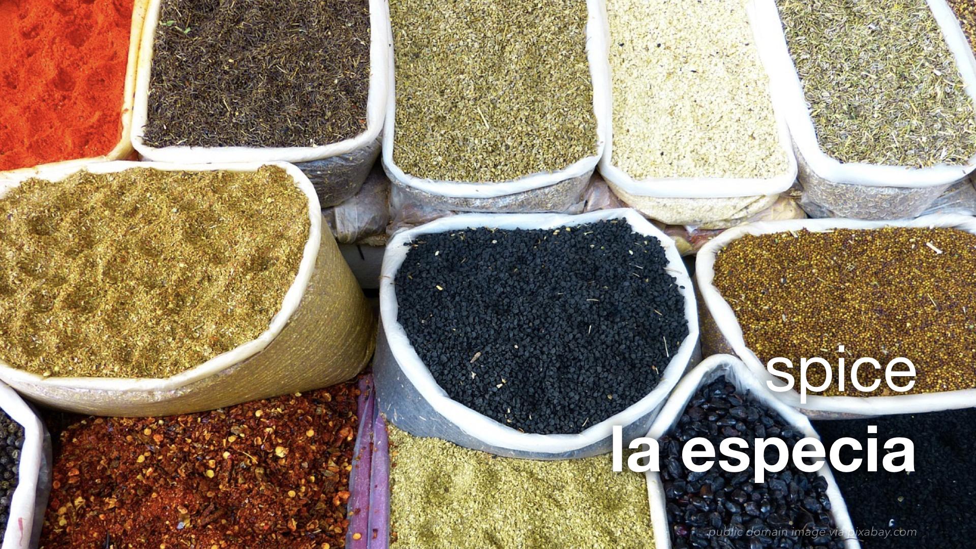 leaf spanish flash – hospitality – the market.010 : the leaf project
