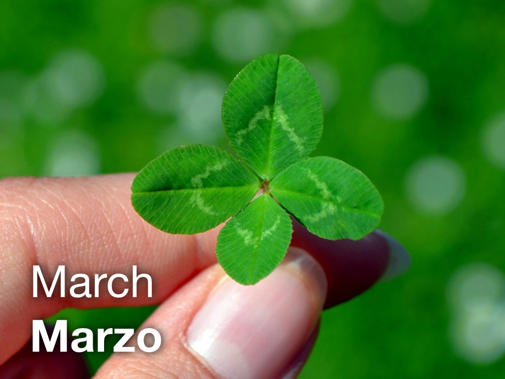 LEAF Spanish Photo Flashcards – March / Marzo : The LEAF Project