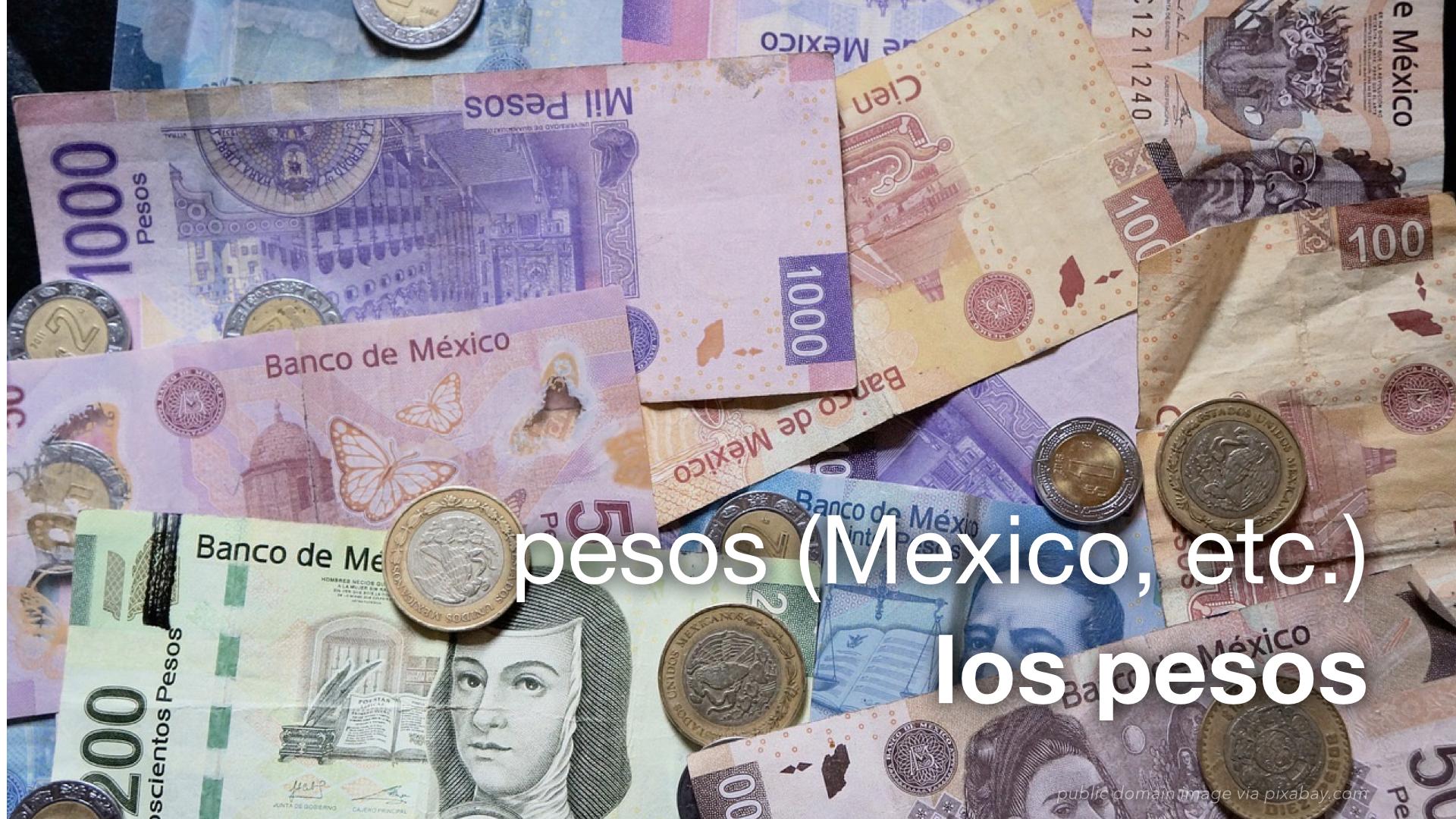 Leaf Spanish Flash Navigation Currency Exchange 044