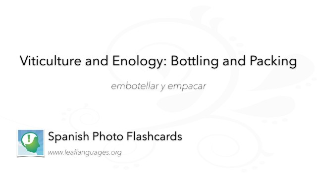 Spanish Photo Flashcards: Viticulture and Enology - Bottling and Packing