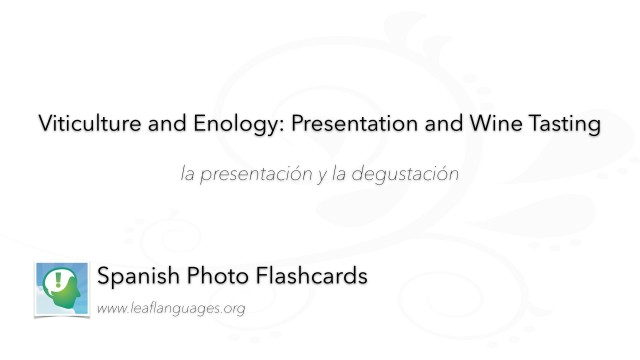 Spanish Photo Flashcards: Viticulture and Enology - Presentation and Wine Tasting