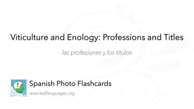 Spanish Photo Flashcards: Viticulture and Enology - Professions and Titles