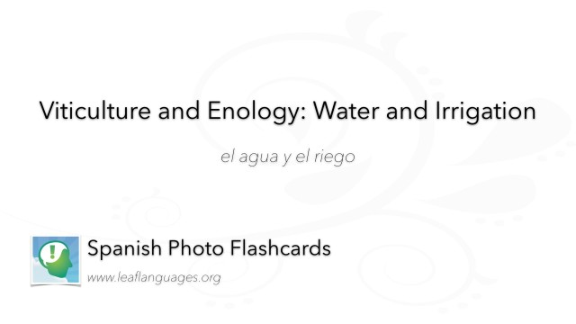 Spanish Photo Flashcards: Viticulture and Enology - Water and Irrigation