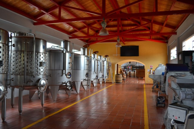 Spanish Vocabulary: Viticulture and Enology - Fabrication and Fermentation